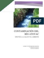 PROYECTO RIO ATOYAC TOXI.docx