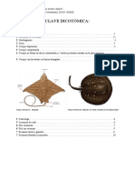 clave dicotómica.pdf