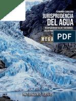 Jurisprudencia del Agua. Megamineria. 1º edición. Naturaleza de Derechos. 10 de Enero 2020.pdf
