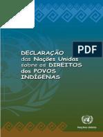 Declaracao_das_Nacoes_Unidas_sobre_os_Direitos_dos_Povos_Indigenas