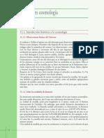 11 - Cap. 11 - Energía en cosmología.pdf