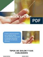 NOCICEPCIÃ_N  Y TERMOCEPCION.pptx