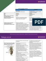 Analisis detallado vertebrados e invertebrados