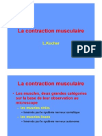 Contraction Musculaire Couleur[1]