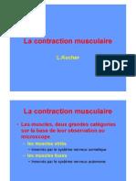 Contraction Musculaire Couleur[1]