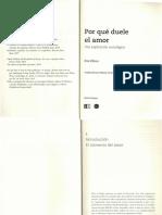 258854665-Por-que-duele-el-amor.pdf