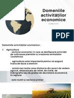 Domeniile activităților economice