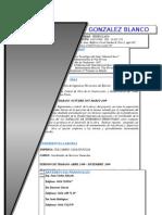 Curriculum Manuel Gonzalez