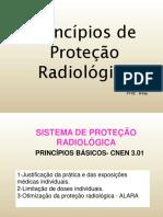 04-Princípios de Proteção