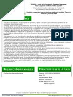 43ed5f2d-86df-4b51-afe9-1d020d4edf5a.pdf