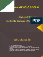 Sistema Nervioso Central eNFERMERIA