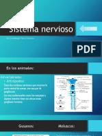Sistema nervioso.pptx SOL