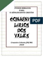 O ADOLESCENTE CRISTÃO.pdf