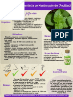 ficheHE21menthe.pdf