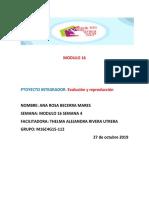 BECERRAMARES_ANAROSA_M16S4PI