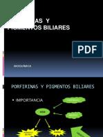 S23. Porfirinas y pigmntos biliares.pptx