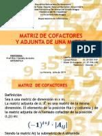 matriz de cofactores (exposicion)