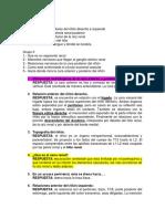 RIÑON.docx
