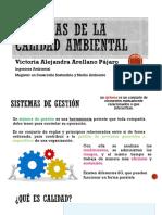 UNIDAD 1.2 CAP 0-3 ISO 9001.pptx