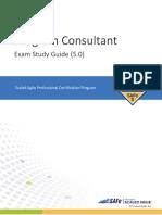 SAFe 5 Program Consultant Exam Study Guide (5.0)