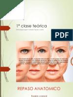 1º clase teórica-osteologia region craneal, facial y cuello
