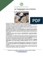 18 Harina de rocas Transformando rocas en alimentos.pdf