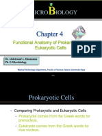 4_Functional_Anatomy_of_Prokaryotic_and_Eukaryotic_Cells