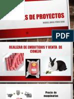 Ideas de proyectos.pptx