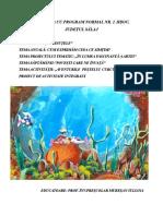 PROIECT INSPECȚIE-27.02.doc