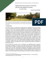 El Parque Arqueologico de Caguana y Su p