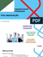 AULAS 1 e 2 Diagnóstico Organizacional e Solução de Problemas.pdf