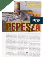 ppsz 41