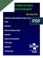 palestra3.pdf