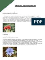plantas medicinales  guatemala