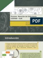 Proceso  Atención de Enfermería Artrosis (1)