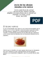 Conferencia_Las_Palmitas_(Presentacion)