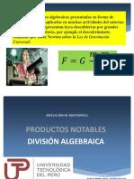 NM Sem04 Ses01 Divsion algebraica.pdf