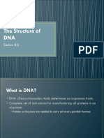 Structure_of_DNA_new.pptx