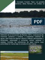 Tema 6. Humedales.pdf