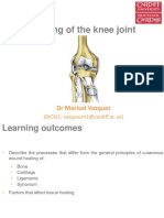 Healing of the knee joint[1]