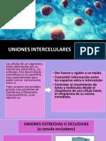 Presentacion biologia 6.0