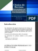 Enfermedades musculoesqueléticas y del sistema locomotor.pdf