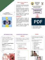 TRIPTICO CANCER ESOFAGO corregido.docx