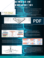 sistema de conduccion infografia