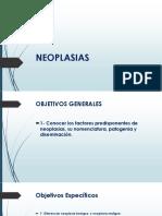 NEOPLASIAS.pptx