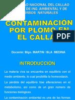 CONTAMINACIÓN CON PLOMO EN EL CALLAO.ppt