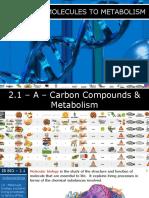 07 - IB Biology (2020) - 2.1 - Molecules to Metabolism PPT.pptx