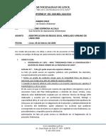 INFORME Nº 002- ANALISIS DE RIESGO DE CAIDA DE ARBOLES_LINCE