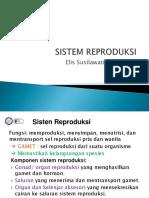 Sistem Reproduksi 2018, 12-14.ppt
