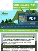 As_novas_oportunidades_para_as_áreas_rurais.ppt